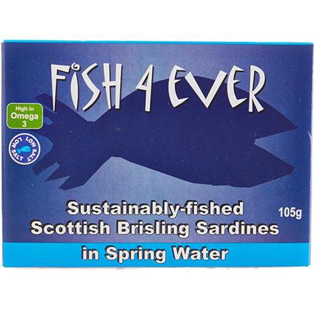 sardine brisling in apa de izvor